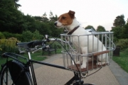 Lucy's first ride on the Pashley