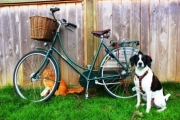 Pashley with Theo and Oliver