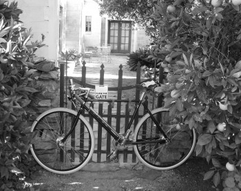 Pashley in Adelaide 3
