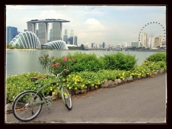Pashley in Singapore