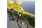 pashley in gozo