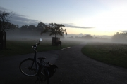 Early Morning Ride